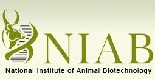 National Institute of Animal Biotechnology – 04 Lab Technician, Project Fellow & Various Vacancies